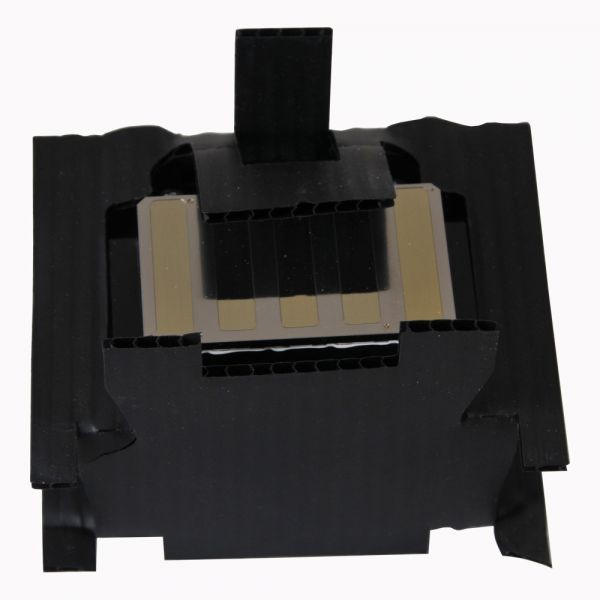 DX6 F191010 F191040 Print Head for Epson 7890 9890